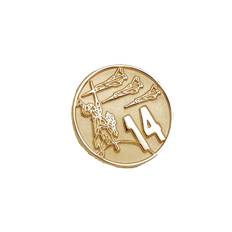 Imagen de Pin Ala 14 por Estrella Militar
