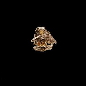 Pin Escudo A.G.A. Dorado
