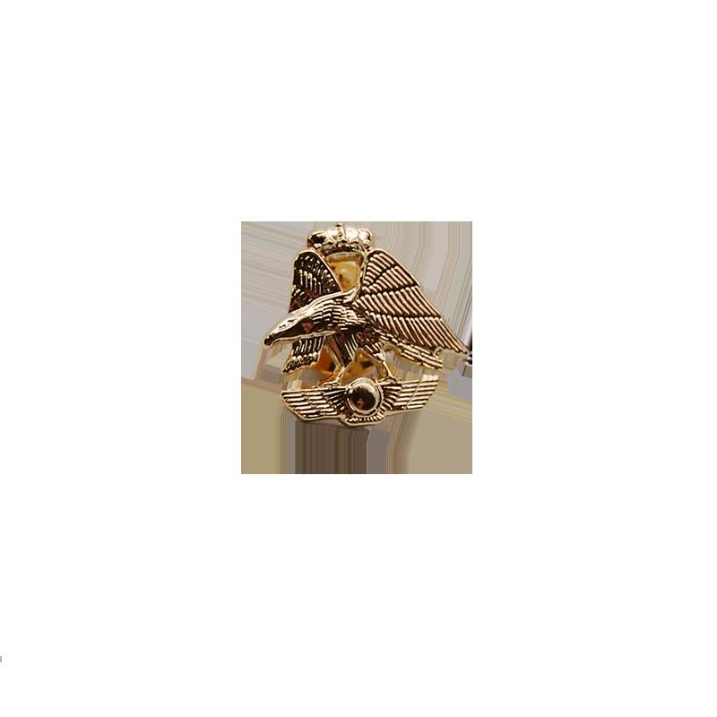 Imagen de Pin Escudo A.G.A. Dorado por Estrella Militar
